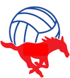 Grapevine Mustang Volleyball